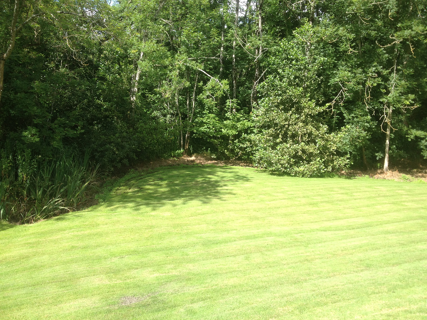 Landscaping Grass Roll : Roll out grass m?che?l quinn landscaping